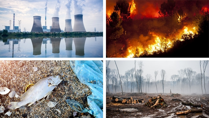 Signs of the climate crisis